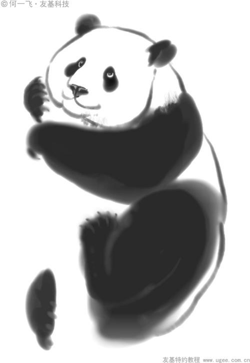 国画熊猫的画法步骤