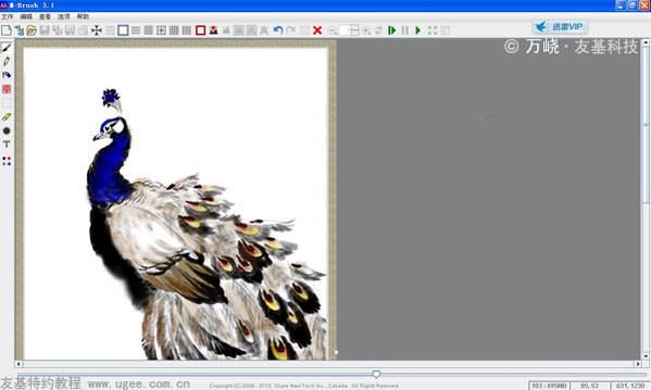 孔雀翅膀雕刻步骤