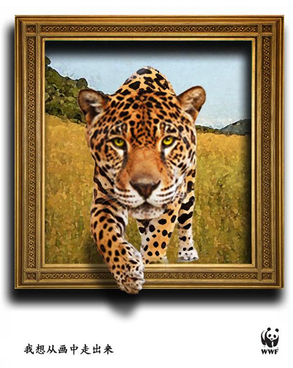 保护动物,有它们的地球才是家园