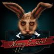 Free Rabbit图标设计